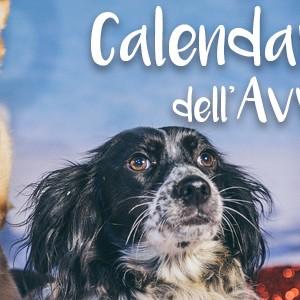 """Un Calendario dell'Avvento in stile """"tropicale"""""""