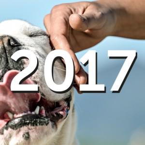 10 tappe per ripercorrere un anno di successi