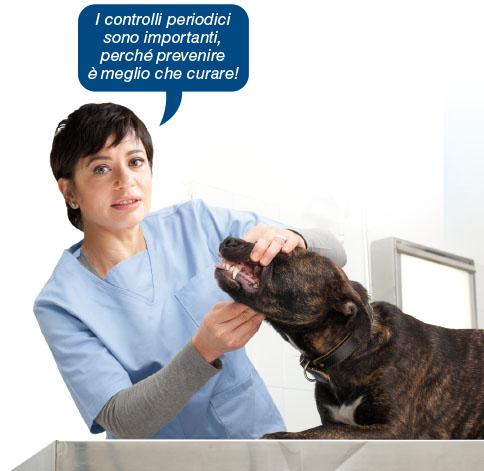 veterinario_controlli_periodici
