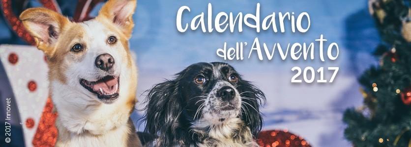 Calendario dell'Avvento Innovet: vince la solidarietà