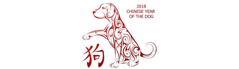 Il 2018 è l'anno del cane