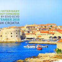 Ricerca Skinalia® nel gatto all'Europeo di Dermatologia