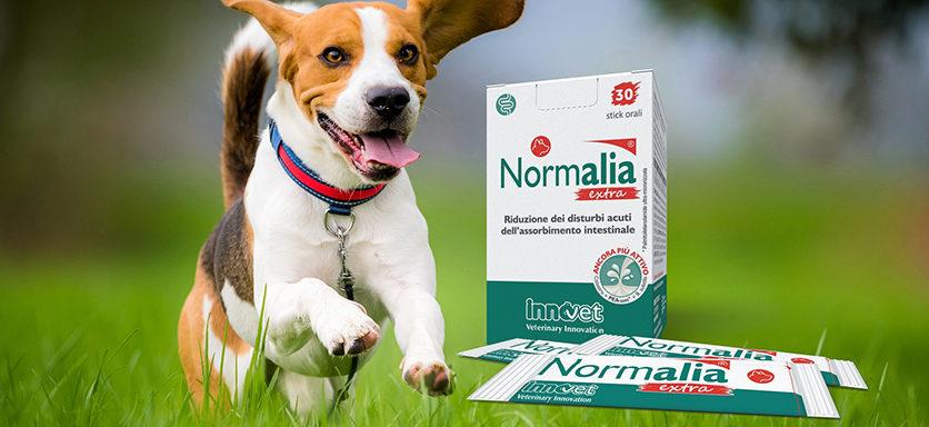 Normalia Extra