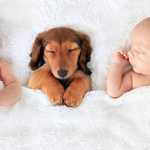 Bambini e cucciolo