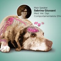 Inflammaging: dolore e psiche nel cane anziano