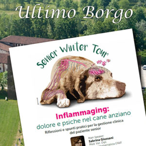 Senior Winter Tour a Settimo Torinese