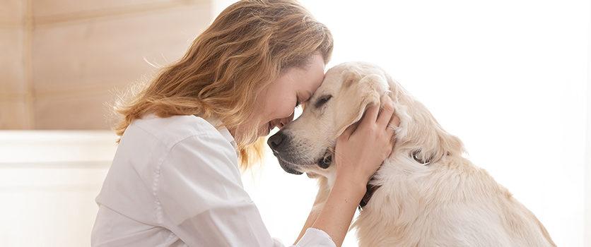 Coronavirus e Pet: consigli per sopravvivere …