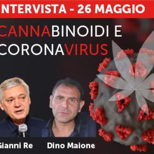 Cannabinoidi e coronavirus: esperti a confronto