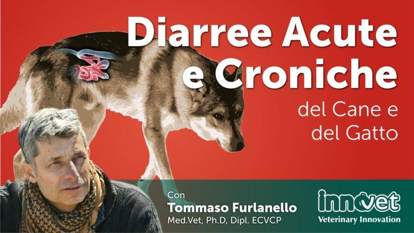 Diarree Acute del Cane e del Gatto da cause infettive / parassitarie.