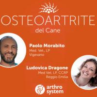 Osteoartrite: un ciclo di webinar per i Medici Veterinari