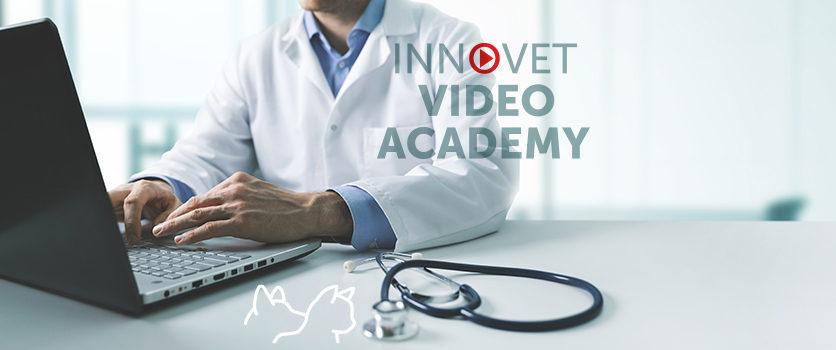 Ti sei perso i nostri webinar? Niente paura c'è Innovet Video Academy