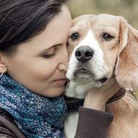 Uomo e animali uniti nel dolore
