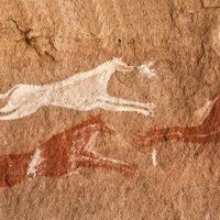 È italiano il primo cane domestico del pleistocene
