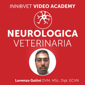 Neurologia del cane su Innovet Video Academy