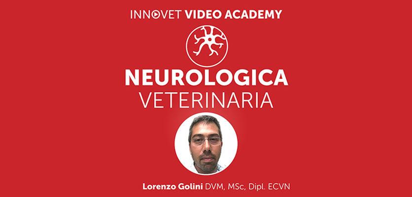 Neurologia del cane su Innovet Video Academy