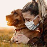 Prendersi cura di cani e gatti ai tempi del COVID