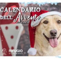Un Natale speciale con il Calendario dell'Avvento Innovet 2020