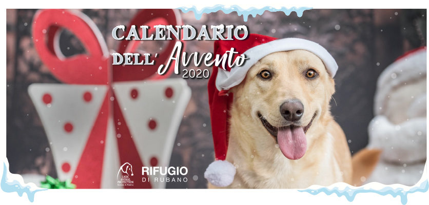 Calendario Avvento Innovet