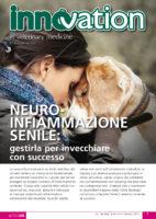 Neuroinfiammazione senile: gestirla per invecchiare con successo.