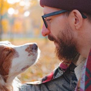 Il fiuto dei nostri cani ci salva la vita