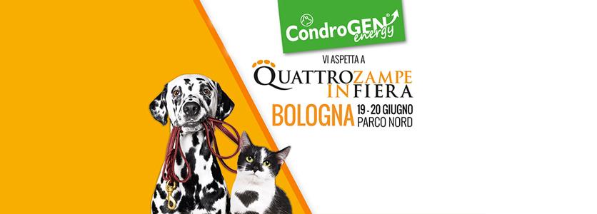 Quattrozampeinfiera ricomincia da Bologna: Condrogen c'è!