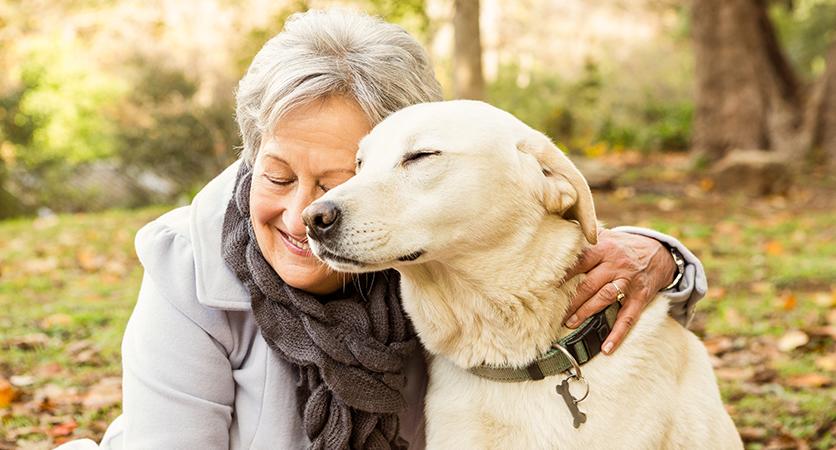 La presenza di un cane fa bene ai malati di Alzheimer