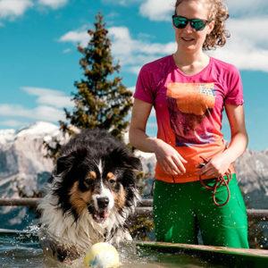 Cani in montagna: cinque regole di salute