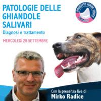 Un webinar veterinario sui problemi delle ghiandole salivari