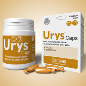 Nuovo Urys® Caps per la salute delle basse vie urinarie di cani e gatti
